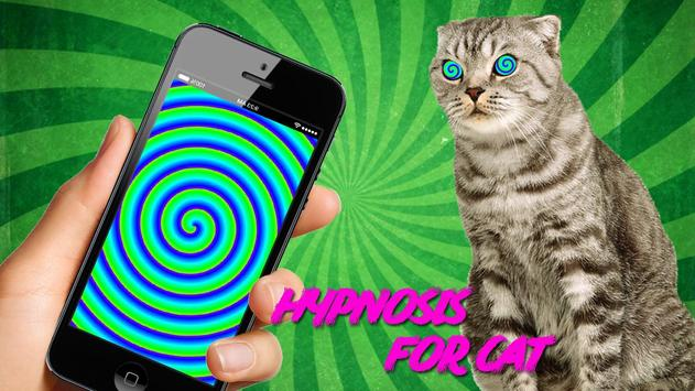 Real Hypnotizer For Cats poster