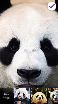 Panda Lock Screen Password screenshot 2