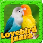 Lovebird Birds icon