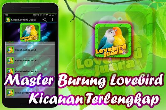 Lovebird Birds poster