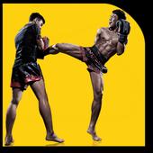 Kickboxing Techniques icon