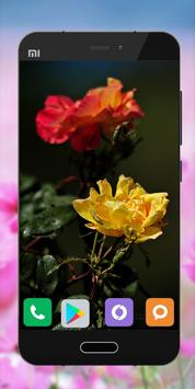 Wallpapers Flower Image HD poster