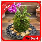 Kokkedama Plants icon