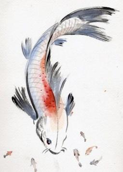 Koi Fish Sketch screenshot 6