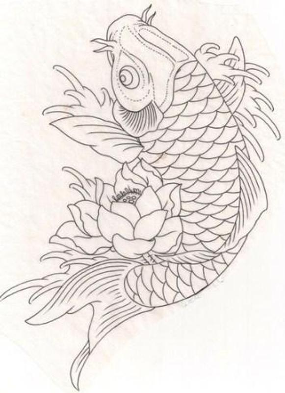 Sketsa Ikan Koi For Android Apk Download