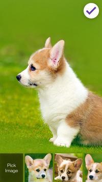 Cute Little Welsh Corgi Puppy Dog Lock Screen screenshot 2