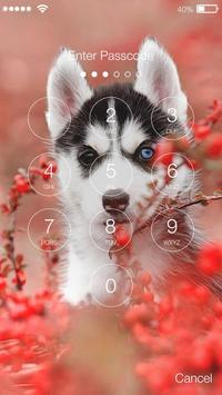Siberian Funny Huski  Dog Puppy Lock Screen apk screenshot
