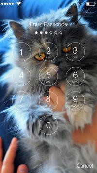 Puffy Cute Persian Cat Kitten App Lock screenshot 1
