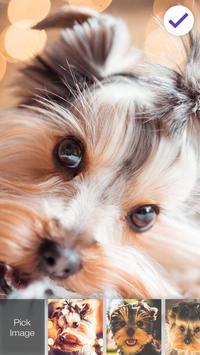 Yorkshire Terrier Dog App Lock screenshot 2