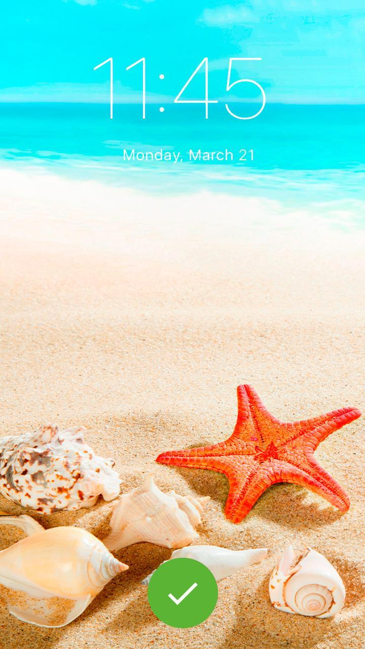 Sweet Starfish Beach Wallpaper Wallpapers Themes