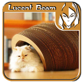 Cat House Design Ideas icon