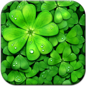 Lucky Charms Live Wallpaper icon