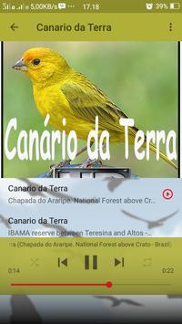 Canto de Canario da Terra screenshot 4