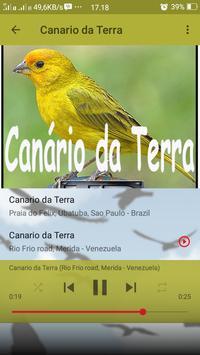 Canto de Canario da Terra screenshot 6