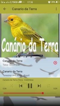 Canto de Canario da Terra screenshot 7