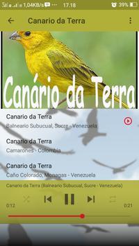 Canto de Canario da Terra screenshot 3