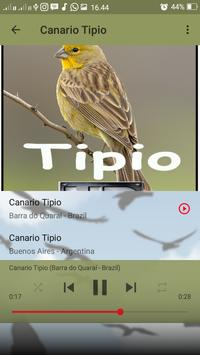 Canto do Canario Tipio screenshot 4