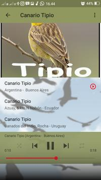 Canto do Canario Tipio screenshot 3