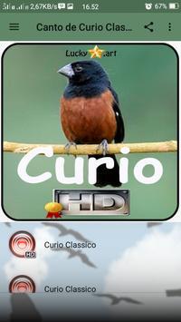 Canto de Curio Classico screenshot 1
