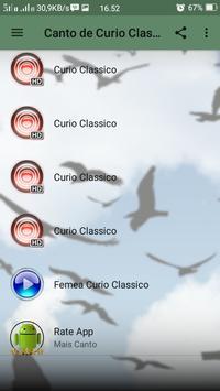Canto de Curio Classico screenshot 2