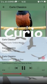 Canto de Curio Classico screenshot 4