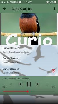 Canto de Curio Classico apk screenshot