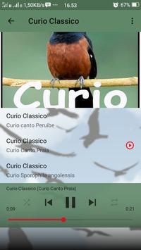 Canto de Curio Classico screenshot 6