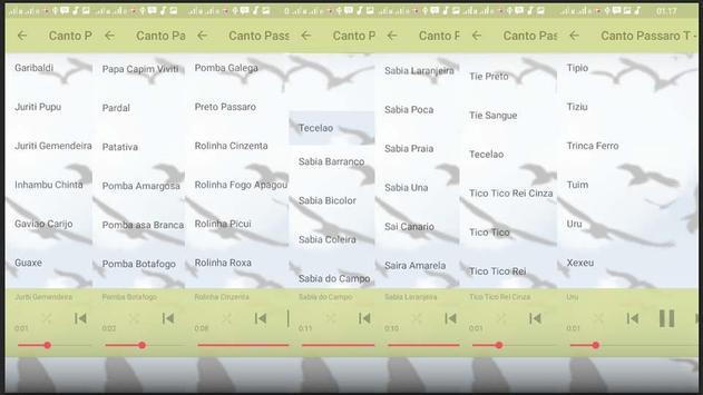 Canto de Dragao screenshot 5