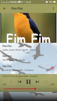 Canto de Fim Fim screenshot 4