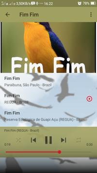Canto de Fim Fim screenshot 5
