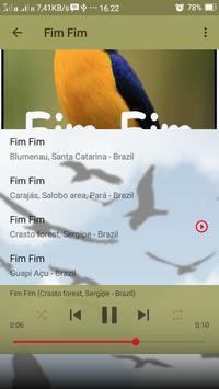Canto de Fim Fim screenshot 3