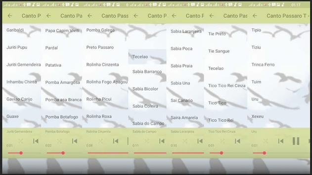 Canto de Guaxe screenshot 5