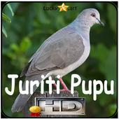 Canto de Juriti Pupu icon