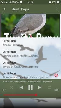 Canto de Juriti Pupu screenshot 3