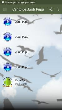 Canto de Juriti Pupu screenshot 2