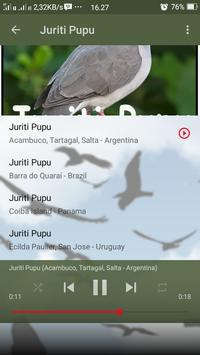 Canto de Juriti Pupu screenshot 4