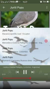 Canto de Juriti Pupu screenshot 5