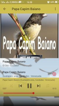 Canto de Papa Capim Baiano screenshot 4