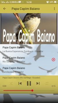 Canto de Papa Capim Baiano screenshot 5