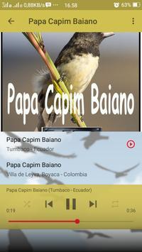 Canto de Papa Capim Baiano screenshot 6