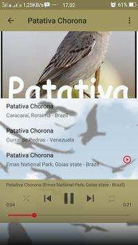 Canto de Patativa Chorona screenshot 4