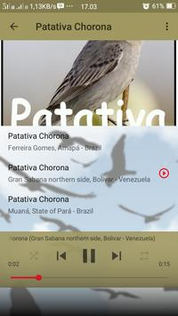 Canto de Patativa Chorona screenshot 5