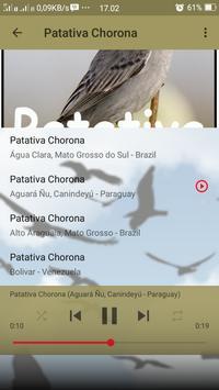 Canto de Patativa Chorona screenshot 3