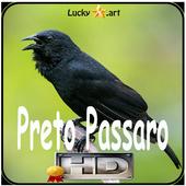 Canto de Preto Passaro icon