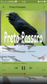 Canto de Preto Passaro screenshot 6