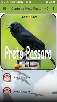 Canto de Preto Passaro screenshot 1