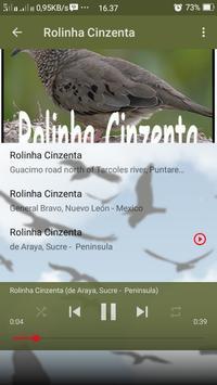 Canto de Rolinha Cinzenta screenshot 6