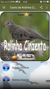 Canto de Rolinha Cinzenta screenshot 1