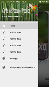 Canto de Rolinha Roxa poster