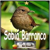 Canto de Sabia Barranco icon